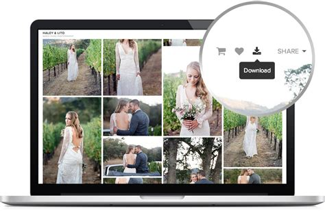 Pixy Set by Pixieset Client Photo Gallery For Modern Photographers
