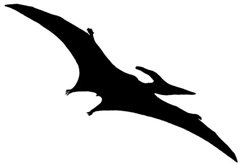 pterodactyl tattoo pterodactyls like small bird tattoos stencil silhouette