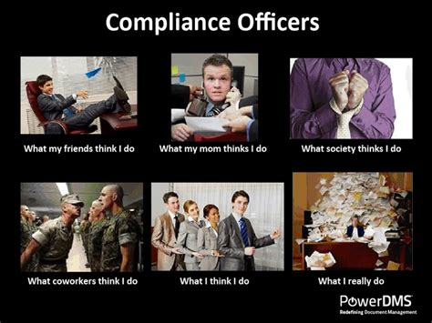 Work Training Meme - 26 best images about compliance on pinterest