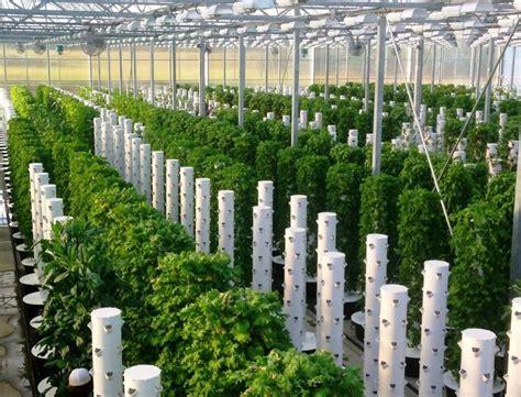 Tulsa Farm And Garden by Scissortail Farms In Tulsa Ok A Commercial Tower Garden