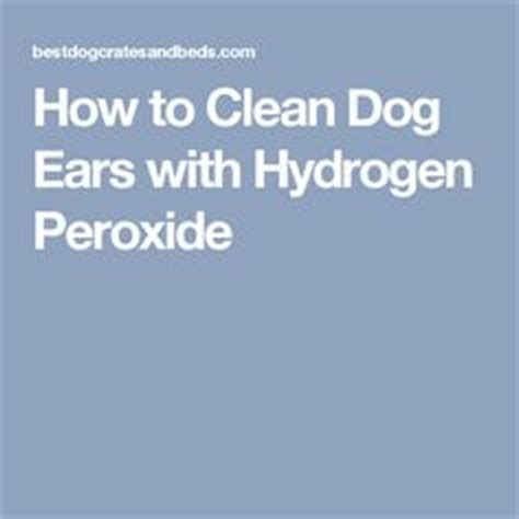 peroxide in dogs ears 1000 images about for the on treats food and