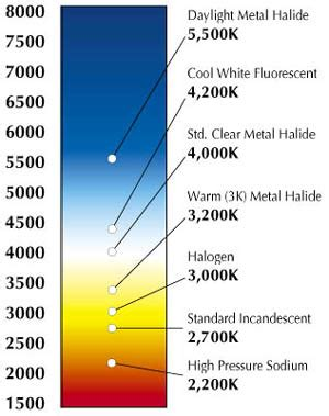 halogen color temperature color temperature what it is and what you need to