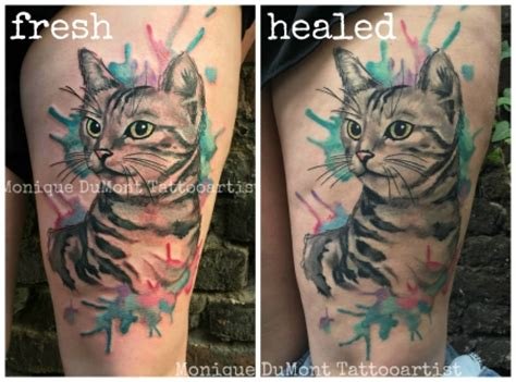 black tattoo healing and turning grey missteriousfrommars watercolortattoo katze scribble