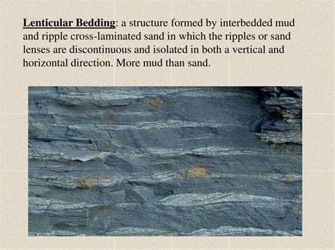 lenticular bedding lenticular bedding ppt chapter 4 sedimentary structures