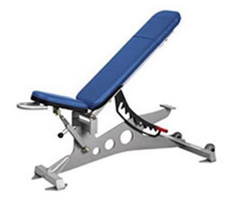 decline bench bodybuilding true natural bodybuilding adjustable flat incline decline