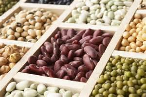 7 best foods for healthy gut flora lakanto monk fruit