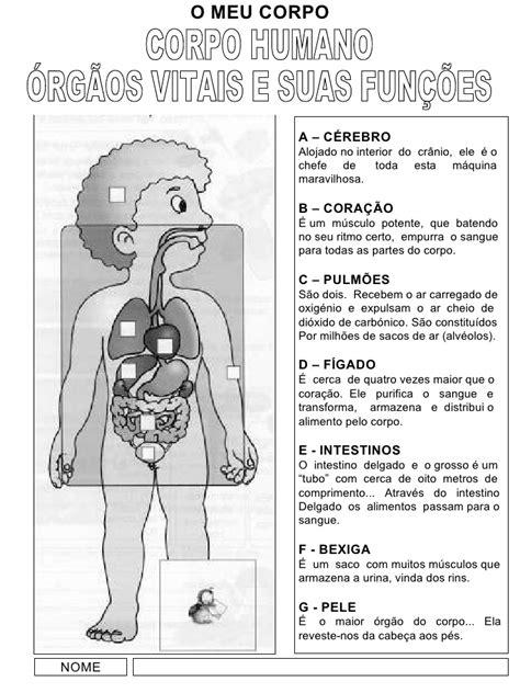 Informação sobre as funções do nosso corpo