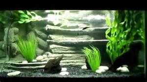3D Aquarium Background   YouTube