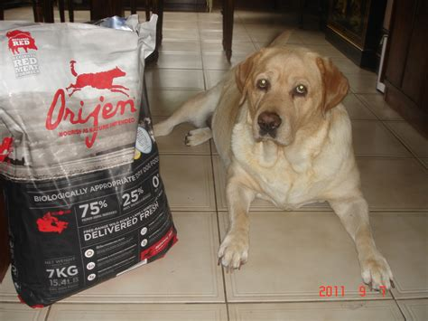 worst puppy food best food vs worst food comparison chart updated 2015 better food for dogs