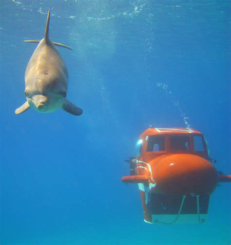 submarine fly by wire yachtsub sportsub iii ss sportsub personal submarines 183 yacht subs 183 tourist subs 183 resort subs