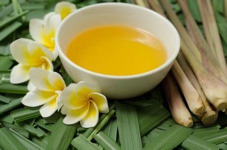 Zwitsal Baby Skin Protector Lotion With Citronella 50ml 50 Ml manfaat citronella pada kulit bayi
