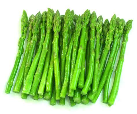 Tanaman Asparagus Hijau gema wirausaha budidaya tanaman asparagus