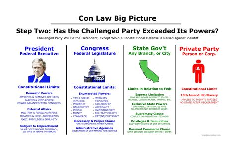 constitutional flowchart constitutional big picture bar study materials
