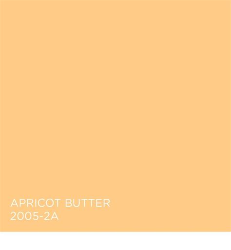 apricot color 121 best in bloom images on