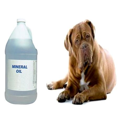 laxatives for dogs how to use mineral to treat constipation in dogs