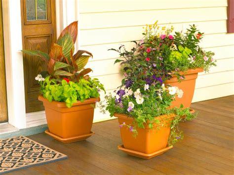 design  container garden hgtv