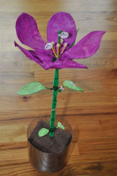 8 Floral And Lovely Projects by 3d Model Of A Flower May Display Math And Science