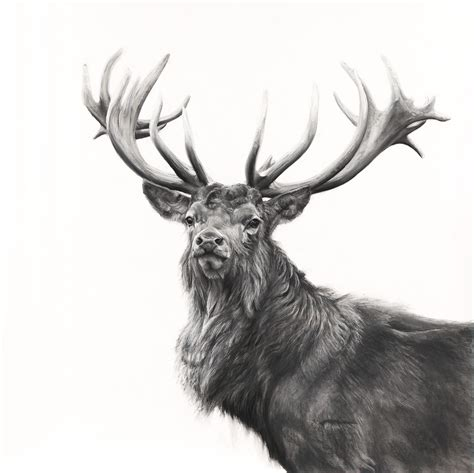 tattoo prices red deer the gunton stag the red dot gallery