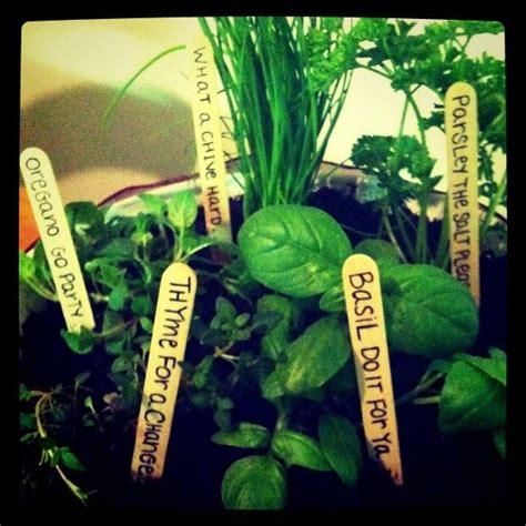 Garden Puns My Friend S Herb Garden Puns Outside