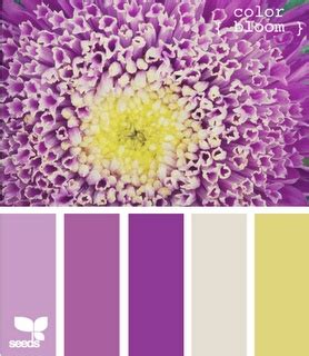colors that match with purple color bloom passionate purple pinterest