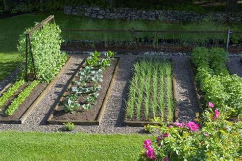 Pupuk Bunga Organik cara merawat tanaman dan aneka tanaman hias yuk menanam