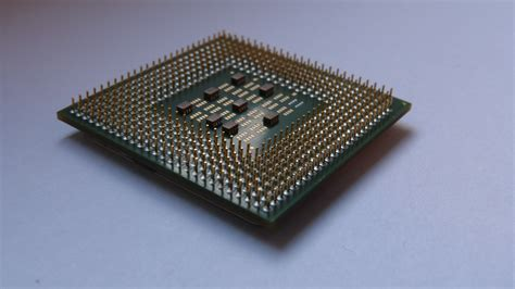 Pentium 4 Sockel by File Pentium 4 Underside Demonstrating Pga Socket Jpg Wikimedia Commons