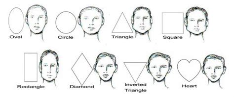 jaw line types portrait drawing for the ultimate beginner the face