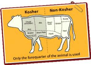 hands on activities for teaching kosher bible belt