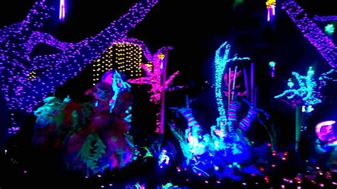 zoo lights 2015 houston houston zoo lights 2015