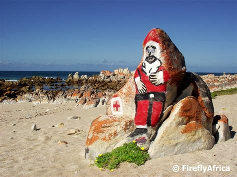 port elizabeth daily photo merry christmas   beach  africa