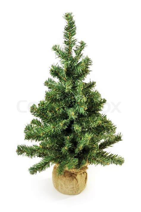 bare christmas tree without decoration isolated on white