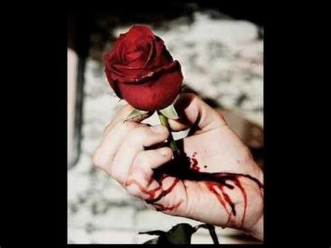 imagenes de rosas marchitas image gallery marchita