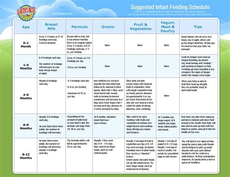 baby feeding chart best 25 infant feeding chart ideas on baby