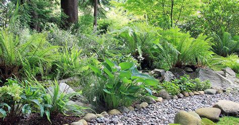 xeriscape design meaning xeriscaping your yard for efficiency and aesthetics