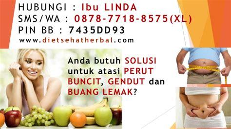 obat pelangsing perut alami herbal aman the knownledge