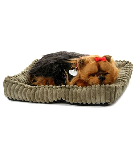 petzzz yorkie petzzz yorkie buy petzzz yorkie at low price snapdeal