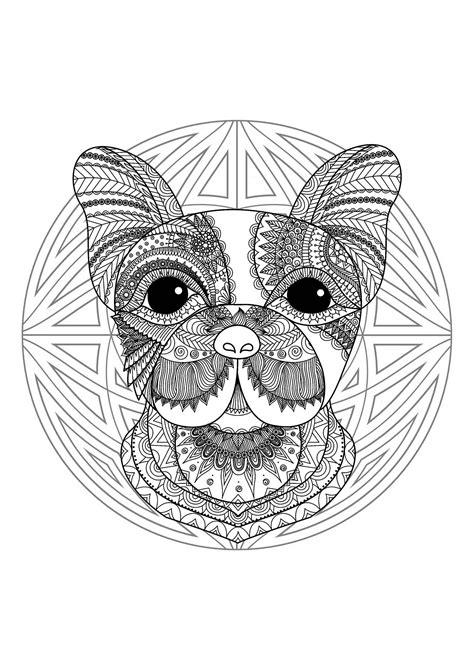 cute dog head mandala mandalas  animals