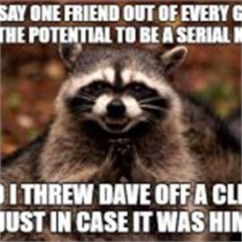 Meme Generator Raccoon - evil plotting raccoon blank meme template imgflip