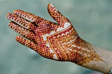 henna tattoo olx henna b the colour henna photos