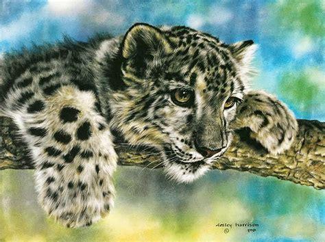 pintura moderna y fotograf 237 a 237 stica preciosos cuadros de animales pintados al 211 leo realismo