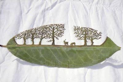 membuat kolase dari daun kering karya seni dari daun kering herbarium