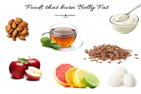 eat your fats foods that help burn belly bows makeup