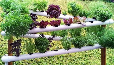 Diy Pvc Gardening Ideas And Projects Pvc Pipe Vegetable Garden