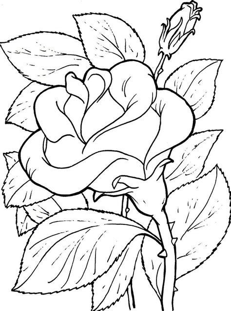 imagenes para colorear y dibujar imagenes de flores para colorear y dibujar
