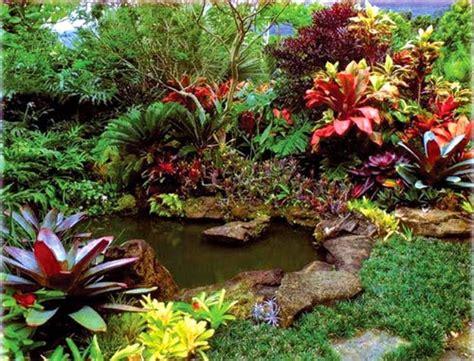 tanaman hias  bentuk cinta alam