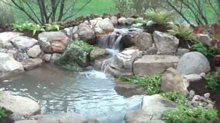 how to build a pond in your backyard how to build a pond in your backyard biologic performance