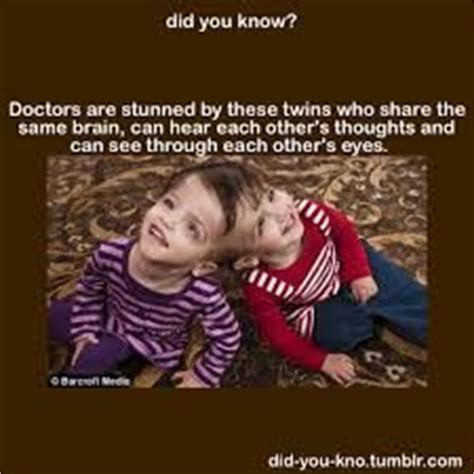 facts google search funny facts weird