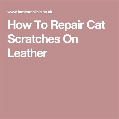 leather couch repair kit cat scratches 1000 ideas about leather repair on pinterest leather