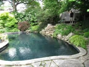 Backyard Paradise Pools Backyard Paradise Pools Splendora Tx 187 Backyard And Yard Design For