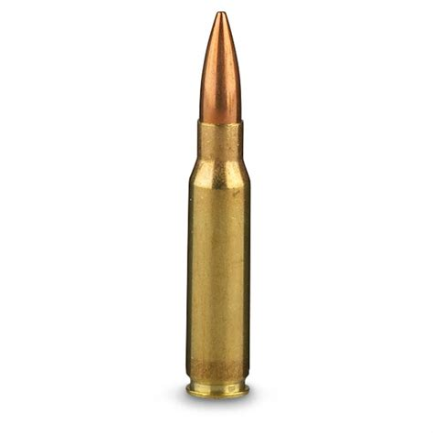 Bullet To The rifle bullets www imgkid the image kid has it